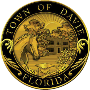 Davie DIY SEO search engine optimization in Davie Florida