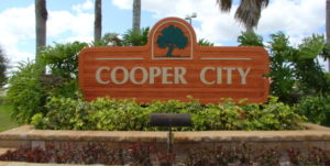 SEO Cooper City DIY SEO Search Engine Optimization and DIY Web Site Design