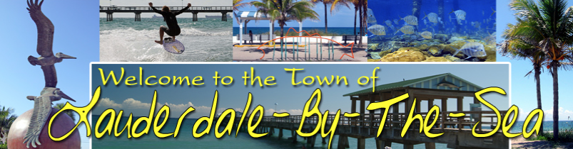 Lauderdale by the Sea SEO search engine optimization SEO